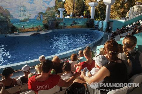 Делфинариј у Сочију