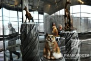 Изложба о Дарвину