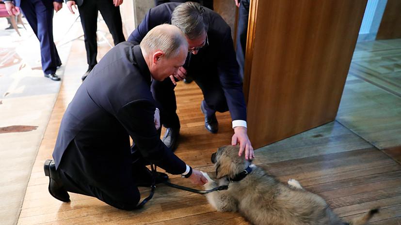 """РТ: """"Препрека за улазак у ЕУ"""": У Бриселу кажу да у Србији постоји ризик од """"ауторитаризма"""""""