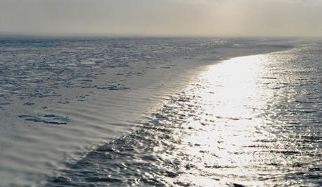 Арктичка грозница или трка за поларном светлошћу