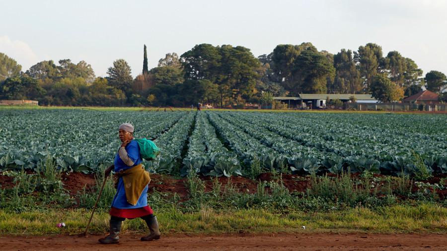 РТ: Јужна Африка гласала за конфискацију земљишта белцима