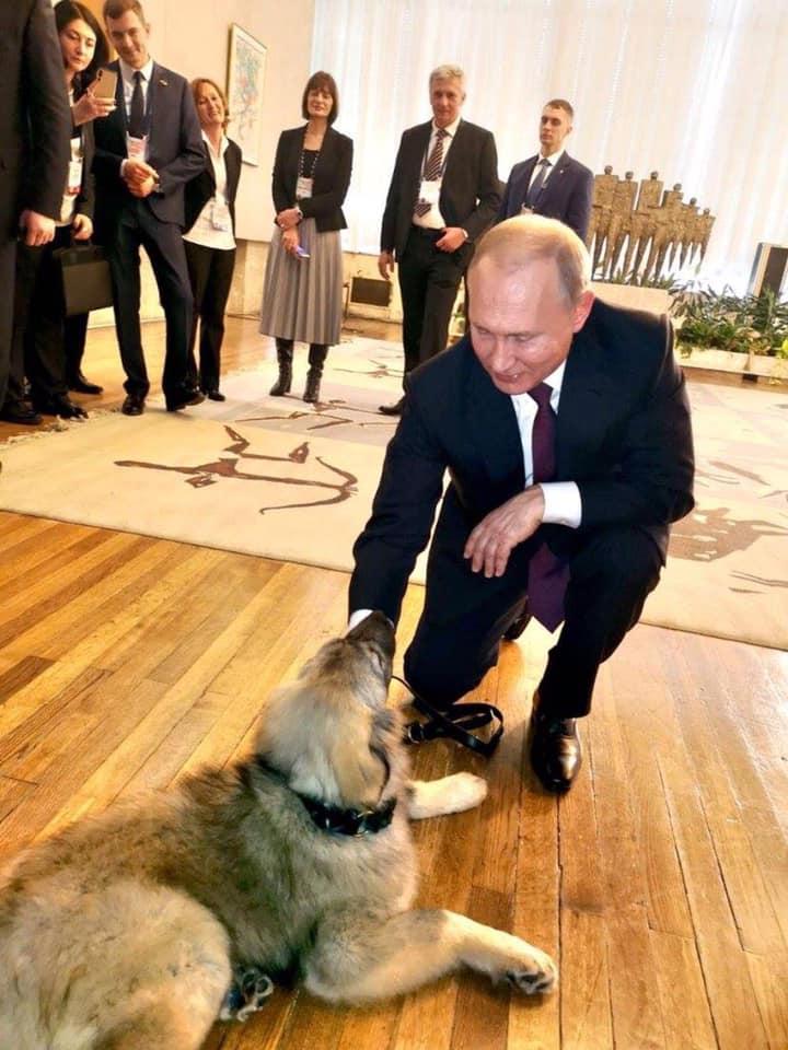 Како су се руски корисници Фејсбука захвалили србском председнику на поклону за председника Путина