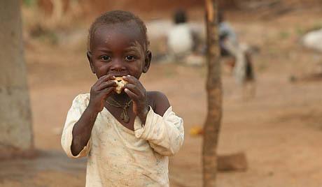 Човечанству прети дефицит хране