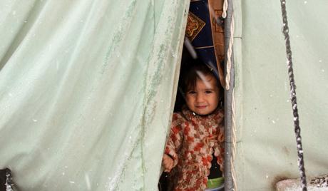 УН: повећао се број избеглица из Сирије