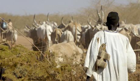 УН: Скоро 4 милиона људи у јужном Судану гладује
