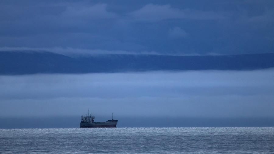 Путин: Руски бродови би могли добити ексклузивно право на транспорт дуж Северне морске руте