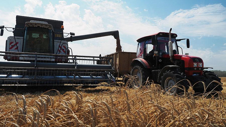 RT: Poljoprivreda donosi mnogo više novca Rusiji od izvoza oružja - Putin