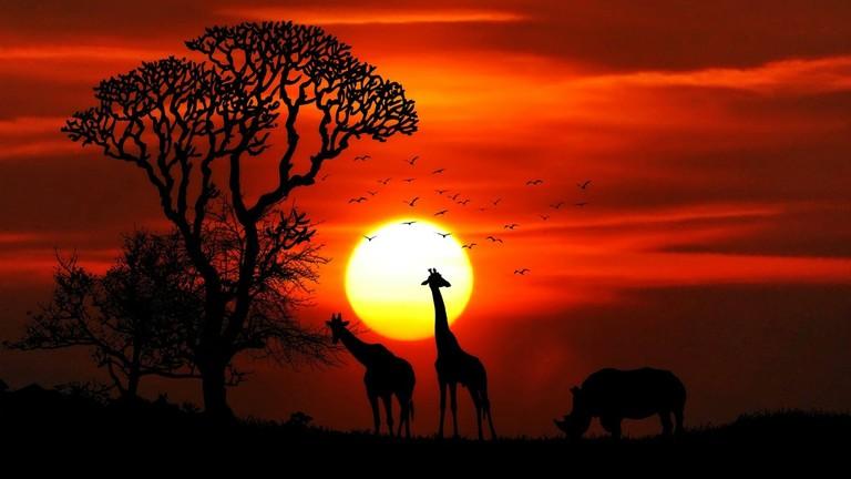 РТ: Африка би могла постати највећа зона слободне трговине на свету