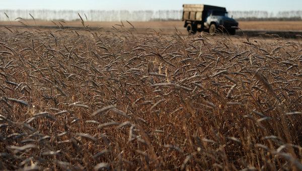 Пекинг разматра увођење царина на све америчке пољопривредне производе