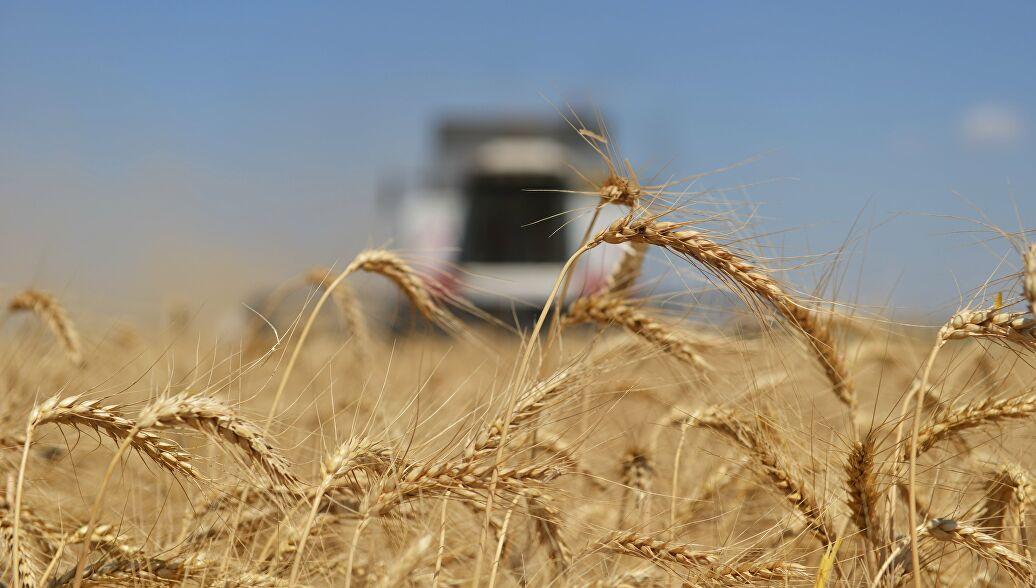 """У УН-у упозорили на ризик од глади """"библијских размера"""""""
