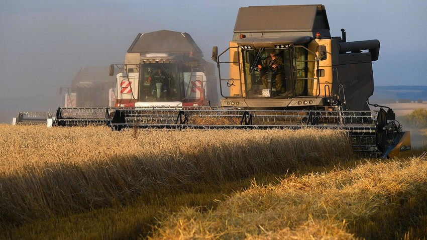 Kako je Rusija postala svetski lider u izvozu pšenice?