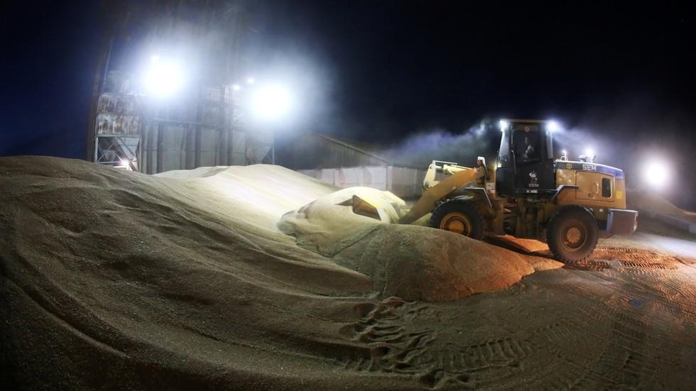 РТ: Русија ће поново бити највећи светски извозник пшенице упркос квотама и порезу на извоз