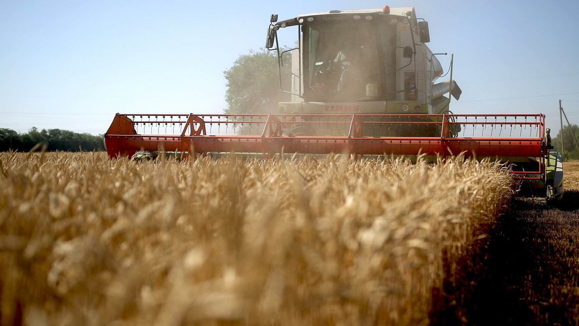 Русија све више извози робу која не спада у сировине и енергенте