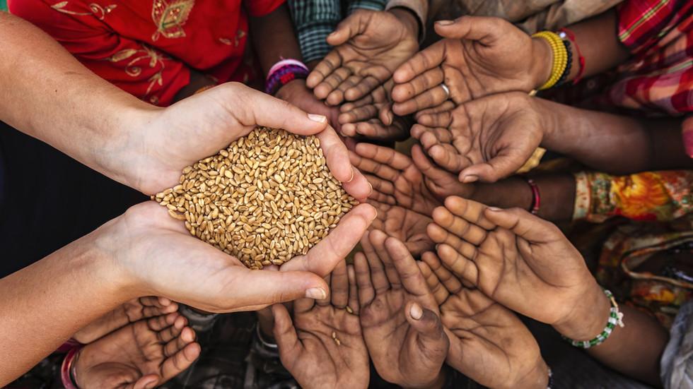 РТ: Свет се суочава са незапамћеном претњом несташицом хране, упозорава агенција УН-а