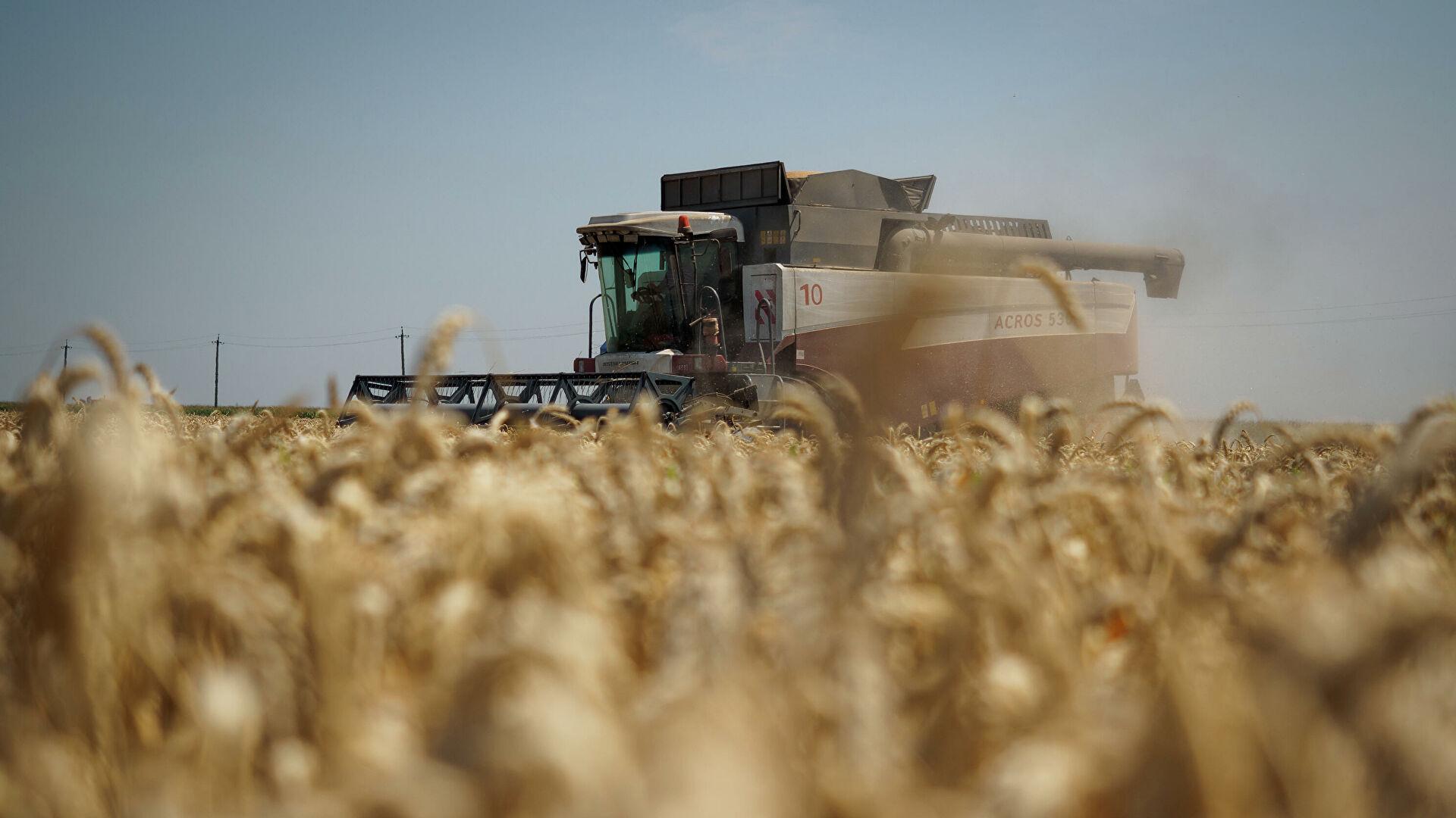 Ukrajina iz Rusije zabranila uvoz pšenice, suncokretovog ulja...