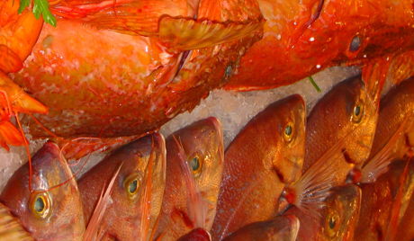 Норвешка извози рибу са глистама