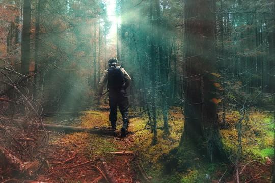 Четири приче пуне опасности са сибирских експедиција једног геолога