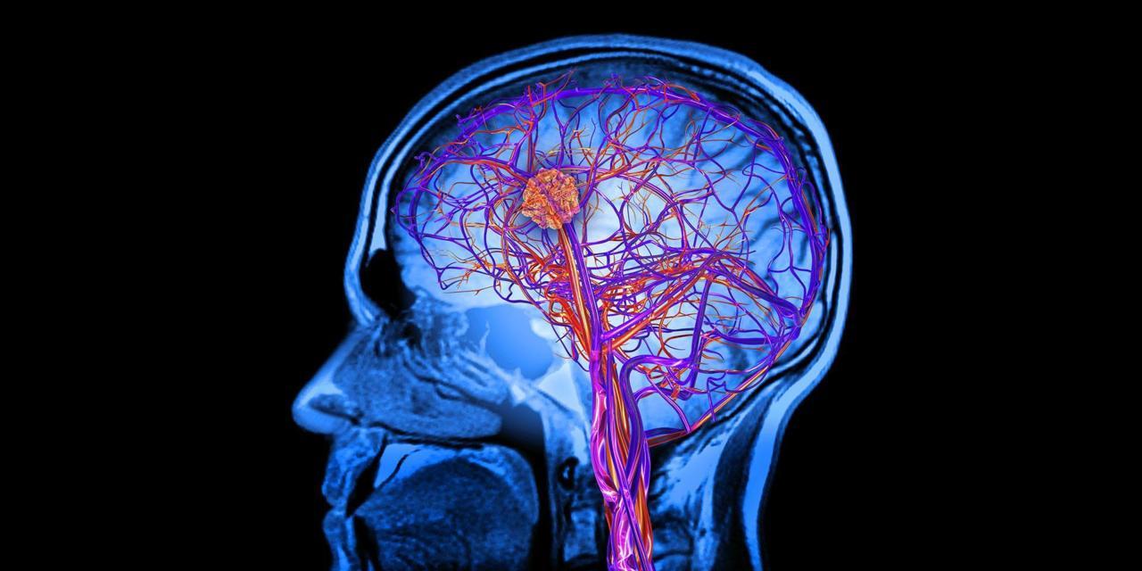 Научници пронашли начин да побољшају рад мозга