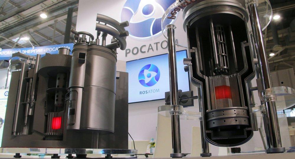 Велики потенцијал за сарадњу србских и руских научника у примени нуклеарних технологија