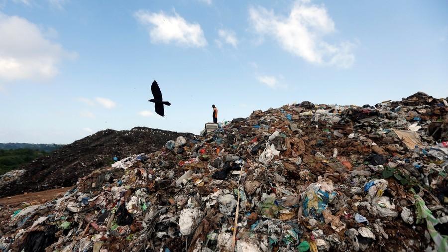 """РТ: """"Време истиче"""" - 15.000 истраживача упозорило човечанство о стању наше планете"""