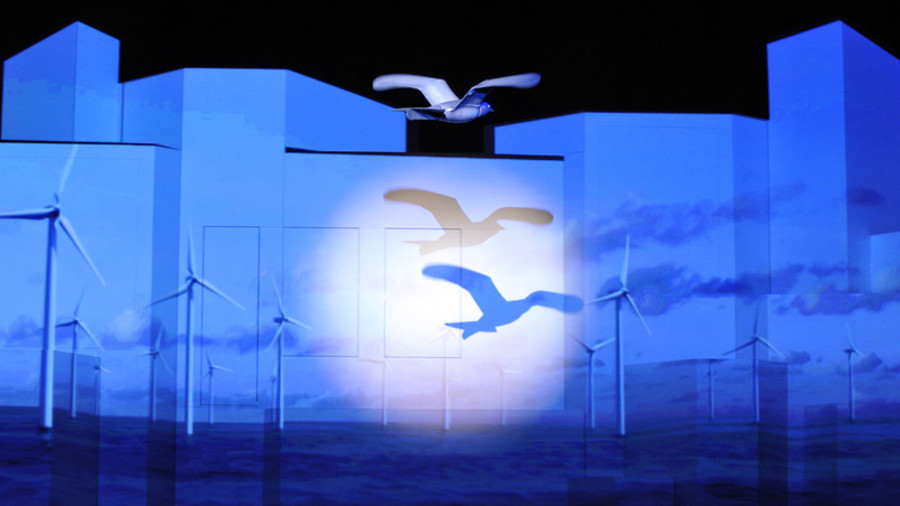 РТ: Шпијунски голубови - Кина покренула програм птица-дронова