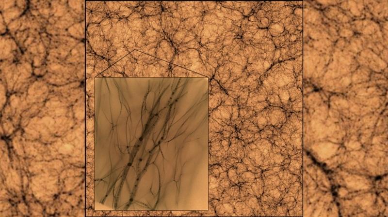 РТ: Симулација открила како би изгледала неухватљива тамна материја кад бисмо је могли видети