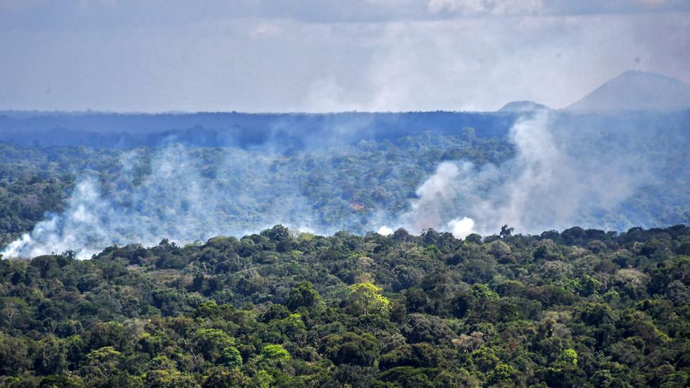 РТ: Амазонске прашуме сада највероватније загревају Земљину атмосферу, а не хладе је, упозоравају научници