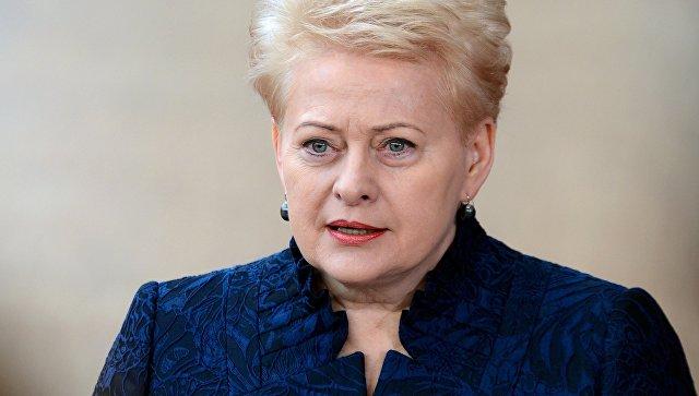 """Литванија спремна да се брани у случају """"војне инвазије Русије"""""""
