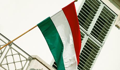 Мађарски Уставни суд укинуо изборни закон