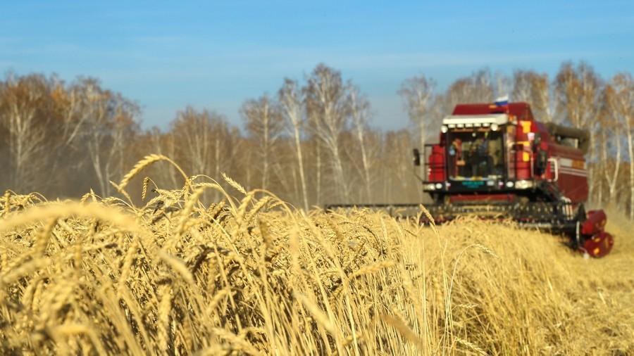 РТ: Русија настоји да храни целу планету - Медведев