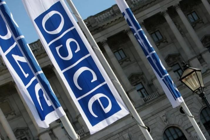 Грушко: Западне земље користе ОЕБС као инструмент за контролу источног простора
