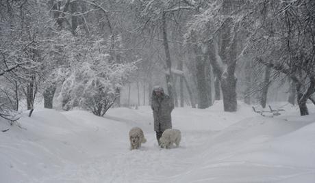 Москва: за неколико сати пао десети део годишње количине снега