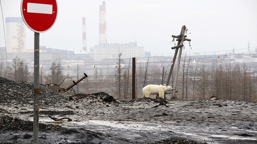 Bogu iza nogu: Mesta u Rusiji na kojima običan život zahteva neobičnu izdržljivost