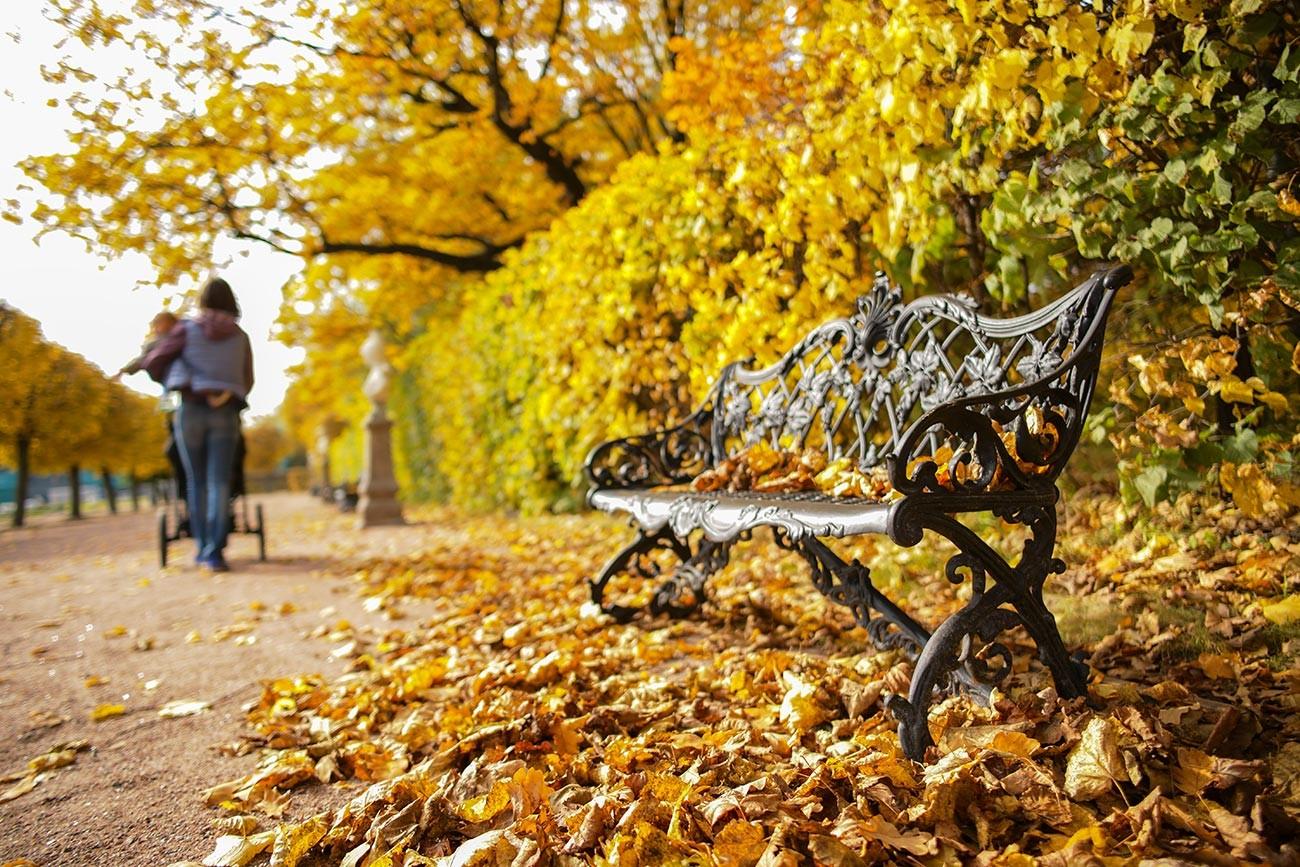 Од Калињинграда до Далеког истока: Очаравајућа руска јесен на фотографијама