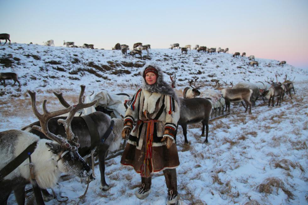 Дан и ноћ у јамалској тундри: Окусите номадски живот са узгајивачима ирваса