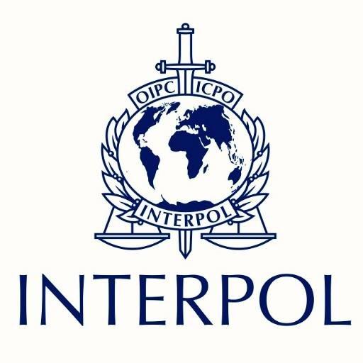 Словенија спремна да сепаратистима у Приштини помогне око чланства у Интерполу