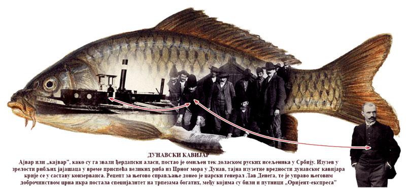 Дунавске але и санџаме