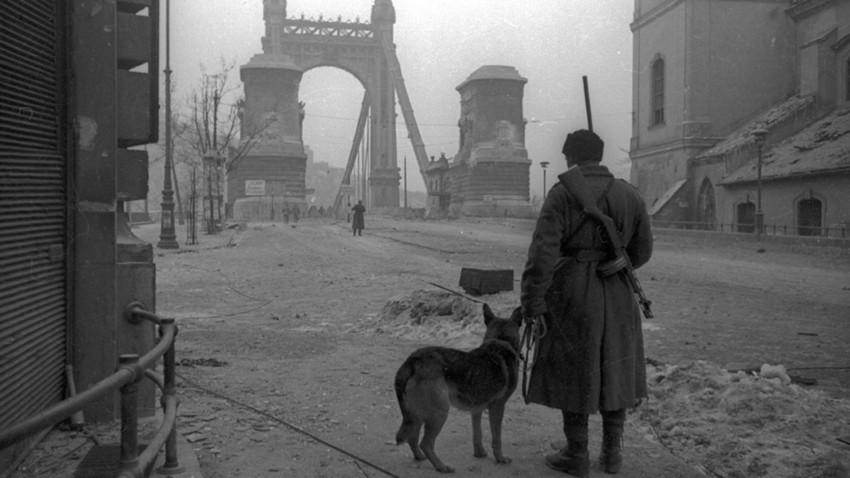 Ослобођена Будимпешта кроз објектив совјетских фотографа