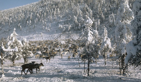У сред лета на Јакутији пао снег