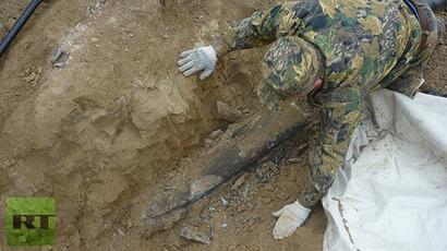 У Русији откривени остаци ретке врсте мамута